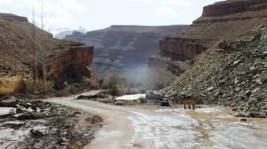 [Maroc Camp/Dernières nouvelles] Dades : camping Ait Oudinar Mini_652213DSCF7472