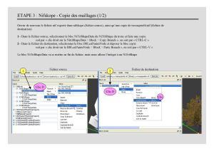 Tuto - 3D - Blender : Création d'un arbre animé - Méthode 1 Mini_715017creationarbres007