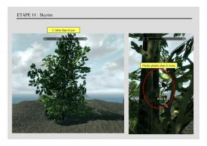 Tuto - 3D - Blender : Création d'un arbre animé - Méthode 1 Mini_730854creationarbres014