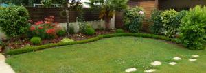 quelques plantouilles au jardin... Mini_758910683