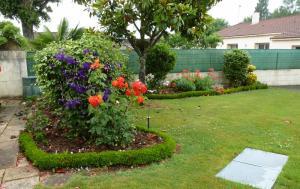 quelques plantouilles au jardin... Mini_759143832