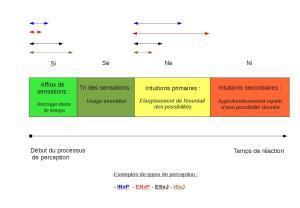 Synthèse sur la perception dans le modèle MBTI Mini_909015PerceptionMBTI