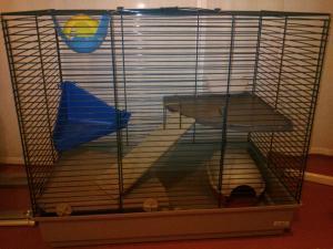 Vend cage rongeur Poitiers Mini_985323DSC0153