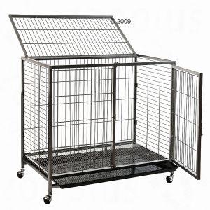 Astuce cage royale (quasi) pas chère!! Mini_992555cagechienTabby