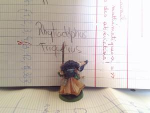 [Le Marine-dark angels] archiviste  Turmiel [FINI] Mini_999953P20141018174615