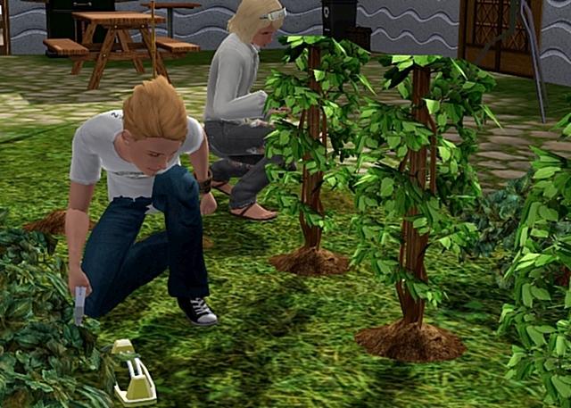 [ABANDONNE] SE4M : Sims Entre 4 Murs - Page 4 112730Screenshot47