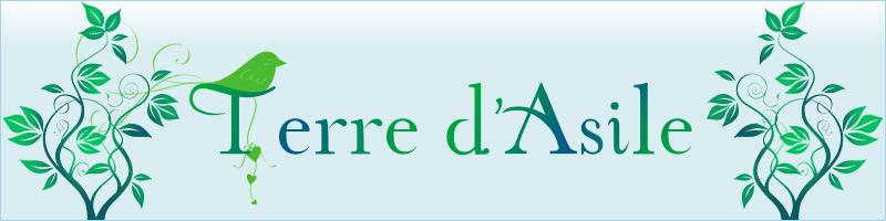 [Souvenir] Thèmes et Kits du forum 122486bannire