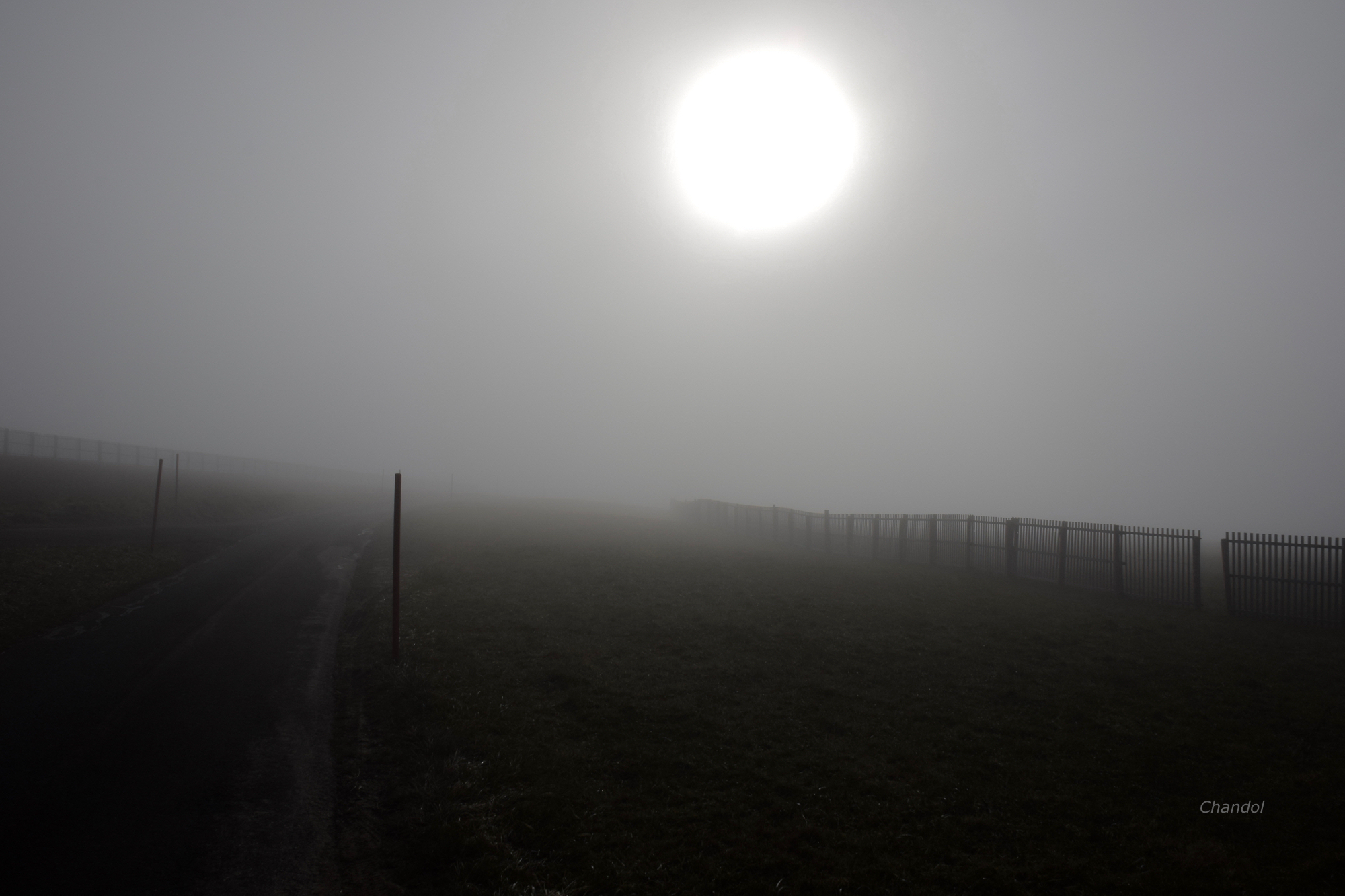 Encore de la brume 122795DSC0003
