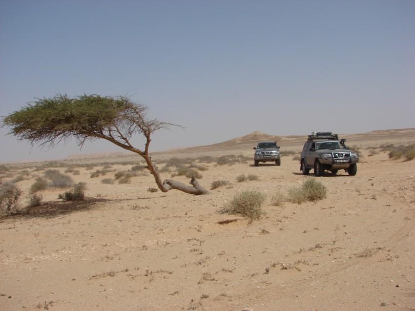 retour maroc avril 2013 127056025