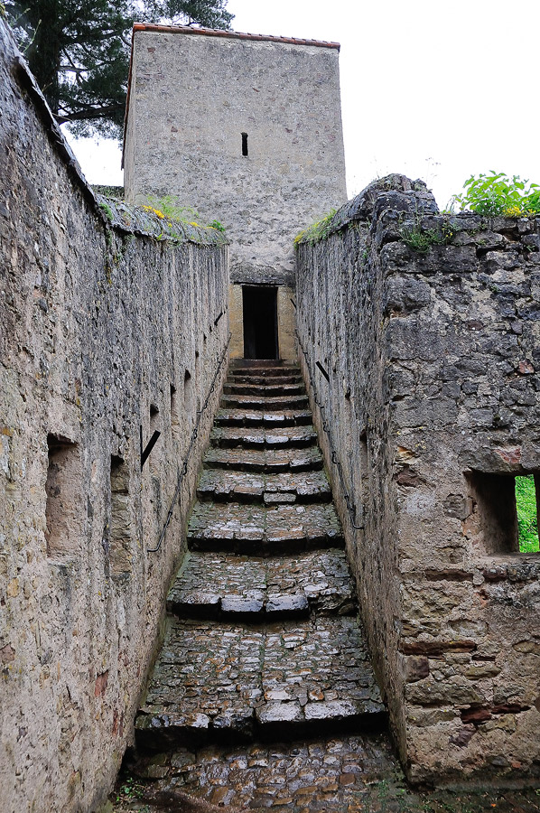 16 juin 2012 : Sortie Château de Malbrouck et de Sierck, point de vue au Stromberg - les photos 130245CRI3348