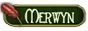 L'Académie de Merwyn