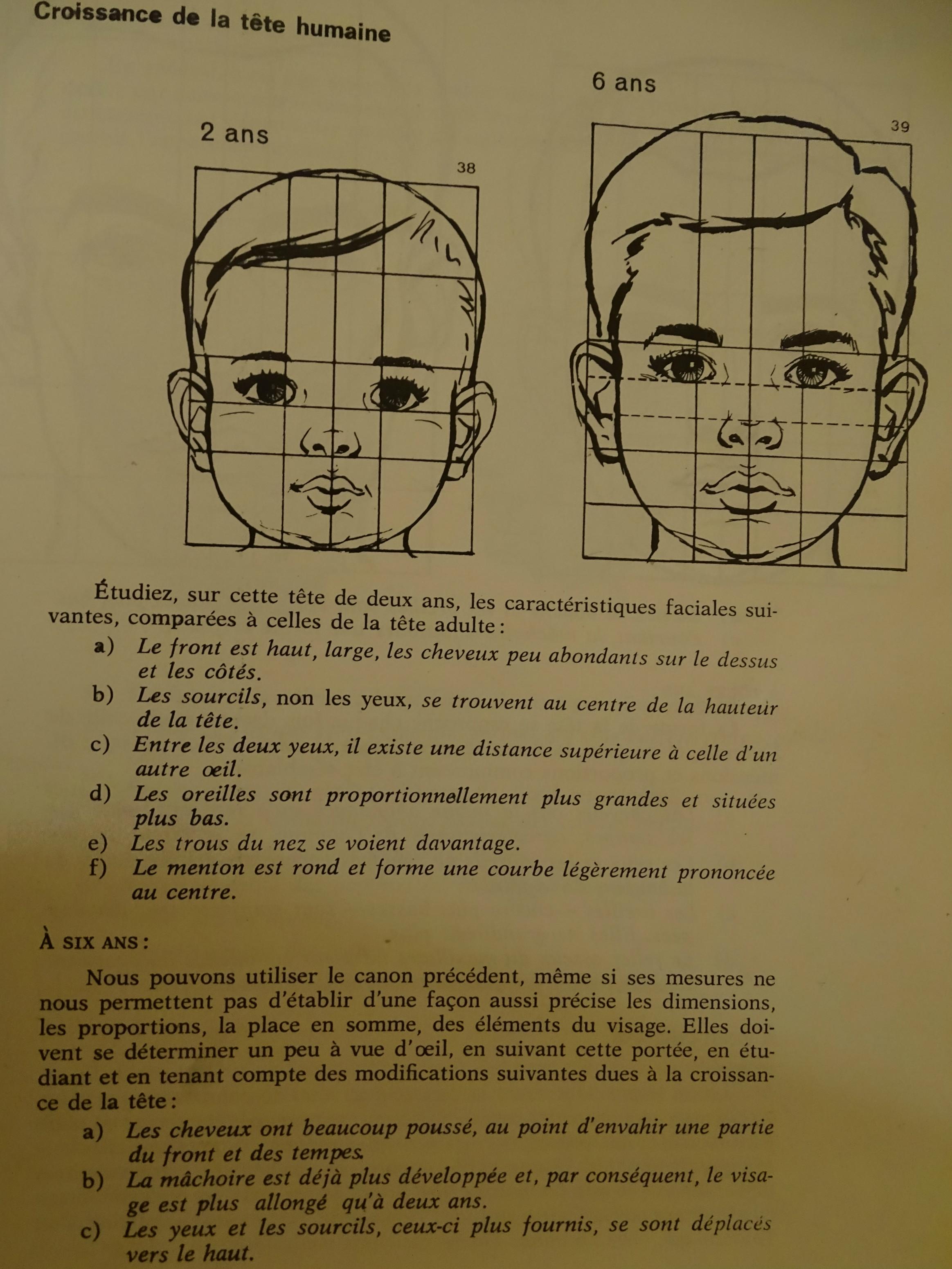 Canons de la tête humaine (Bébé, enfant) 132690canonenfant