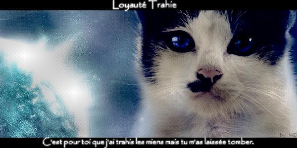 Loyautée Trahie  ~ L'amour nous détruit. 134986Roussy