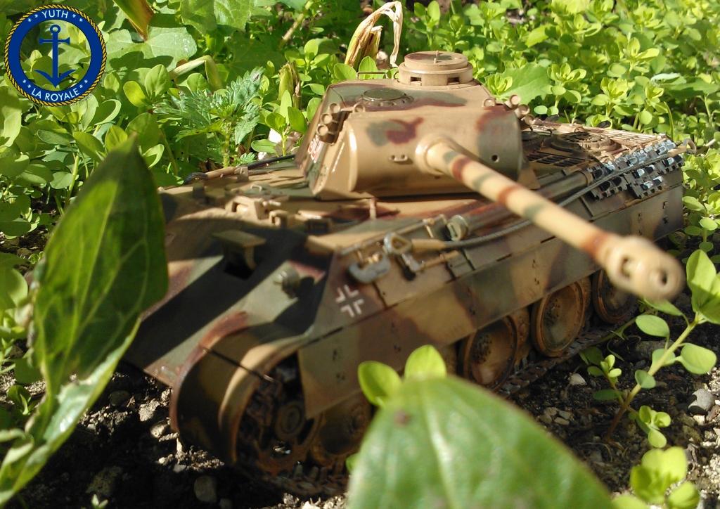 Panzerkampfwagen Panzer V Panther Ausf D. 137941panther45