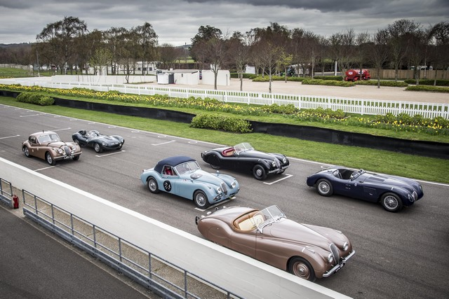 Jaguar Heritage Racing aux Mille Miglia 2014 138101jaguarheritageracing