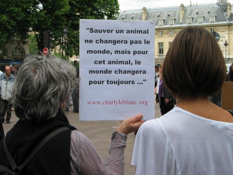 11 - Manifestation contre le massacre des animaux en Ukraine - 9 juin 2012 141979IMG9217