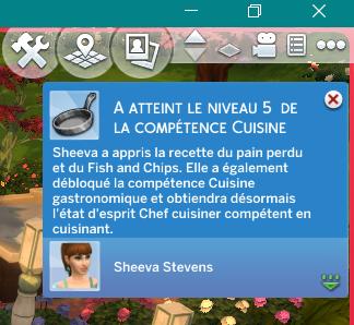 [Clos] Les défis Sims - Niveau 0 - Page 2 143562Level5