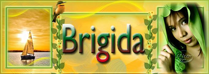 Nombres con B - Página 9 1470021Brigida