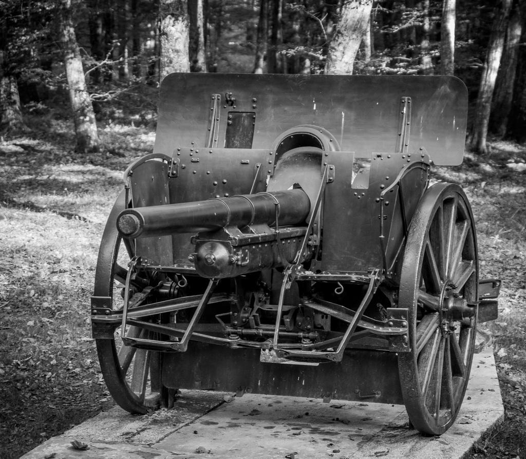 Canons de Belleau 150101IMGP7052