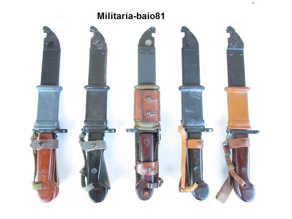 Les Baïonnettes de Kalashnikov. 150219IMG1485Copie