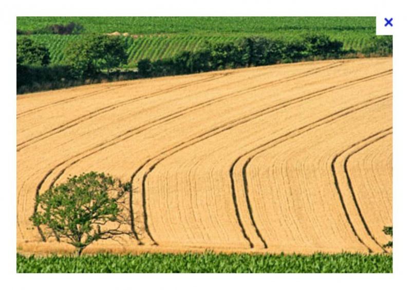 Petite histoire de l'énergie, son rôle en agriculture dans l'histoire - Page 2 153020champs