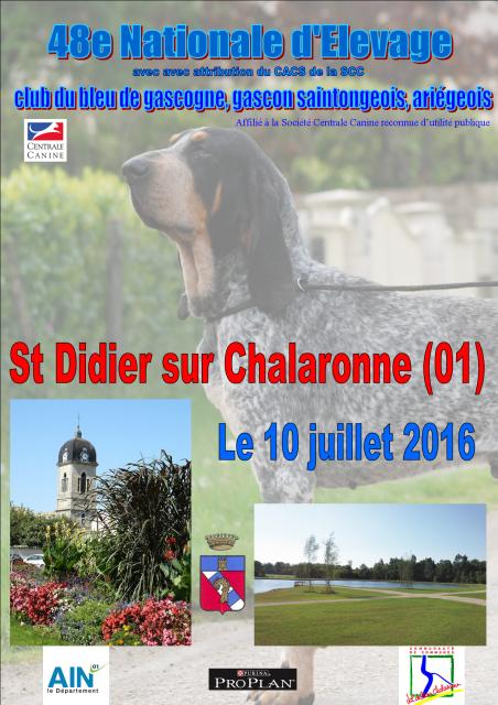 NE 2016 à St DIDIER SUR CHALARONNE (01) 157948bulletin