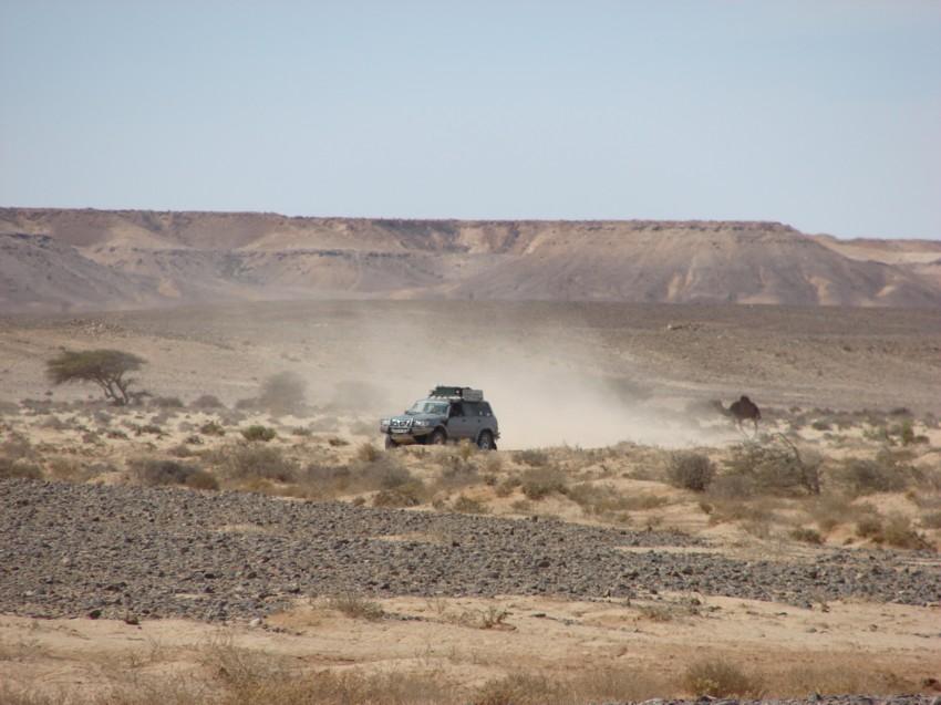 Le Grand Sud du Maroc - II 158199043