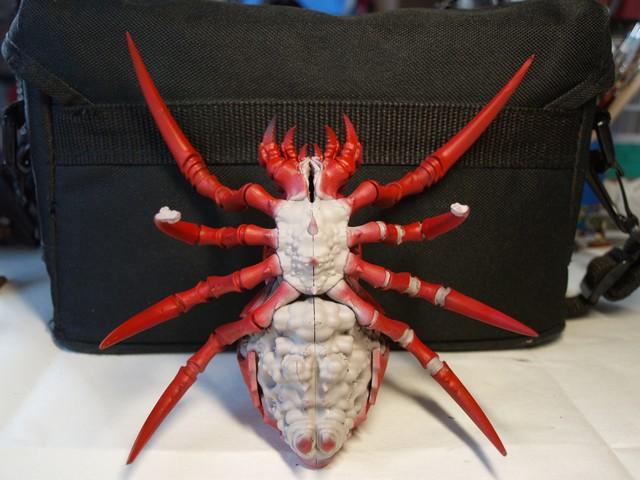 FINI - Arachnarok 167759Arach6