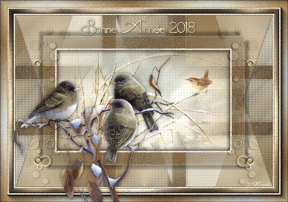 Bonne Année 2018 (PSP) 174279bonneanne