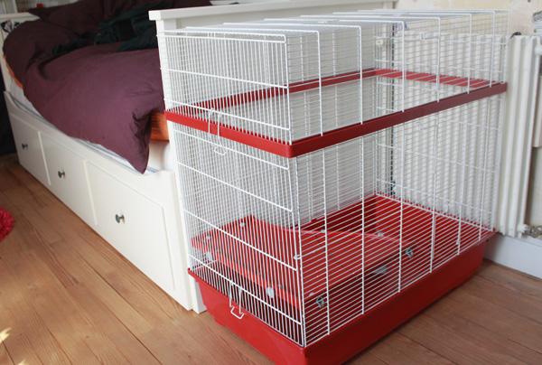 Cage rouillée 176942cage2