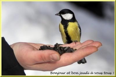 Bonjour bonsoir,...blabla Decembre 2013 - Page 2 186584je310110