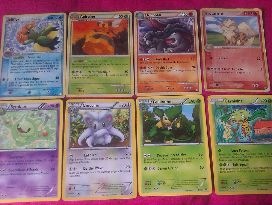 Cartes Pokémon (Boosters, Echanges...) 187963IMAG0957
