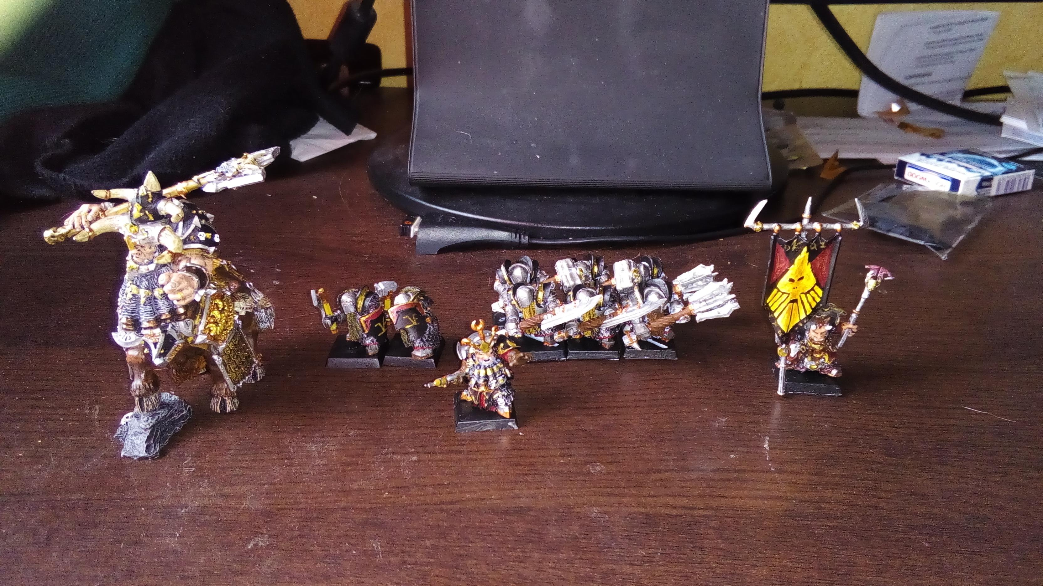 Les Armées de Nico. (Battle & 40K) 188128IMG20160222144134