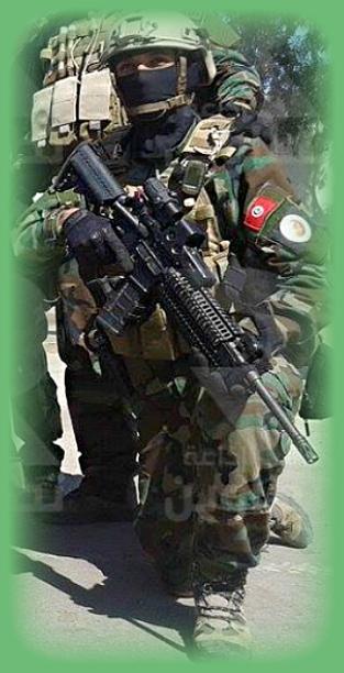 Armée Tunisienne / Tunisian Armed Forces / القوات المسلحة التونسية 189479128214459850434015510923367118937409439645n