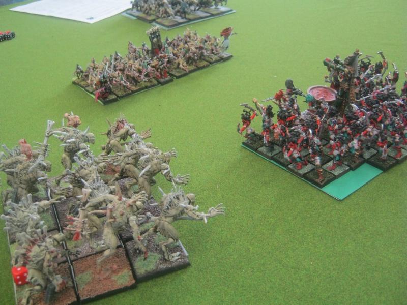 Méga bataille en 3 parties, pour une mini campagne 192427IMG1445
