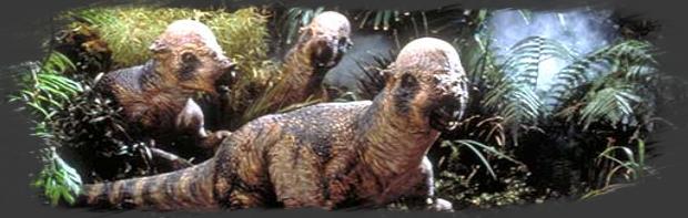 L'Arène des Pachycépalosaurus