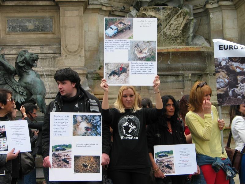 11 - Manifestation contre le massacre des animaux en Ukraine - 9 juin 2012 196762IMG9225
