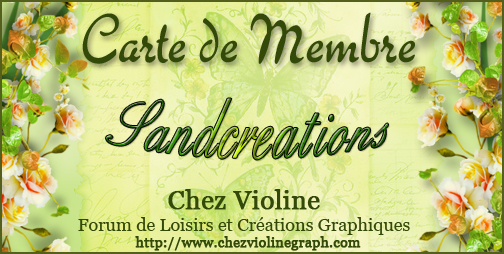 Carte de membre - Page 66 197843sandcreations
