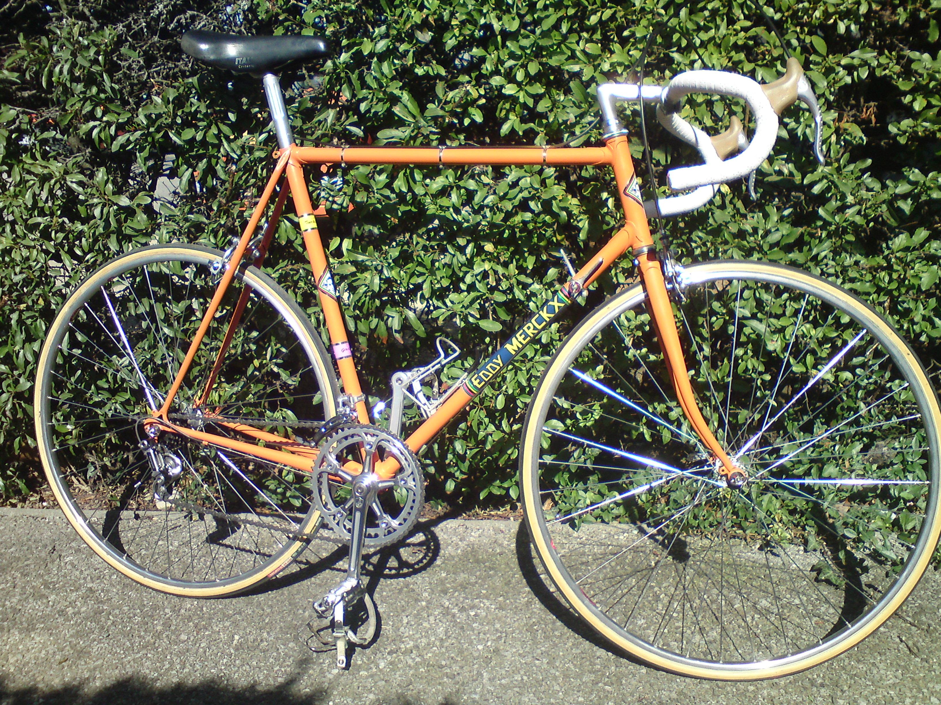 Pinarello 1978  202383DSC031201