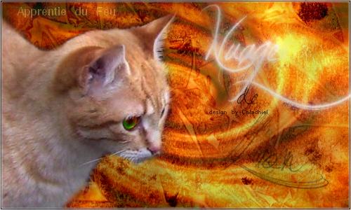 Alliance pour la destruction... [ PV Helen, Étoile Oubliée, et moi, Griffe de Ronce] 206815SignaNuagedeLion