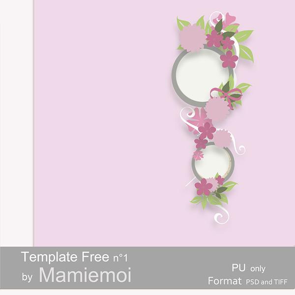 FAN page  Mamiemoi maj 05/02/2014 209938previewtemplate1