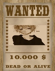 les affiches wanted  215643mesmontagesfrUL5EE56DDF
