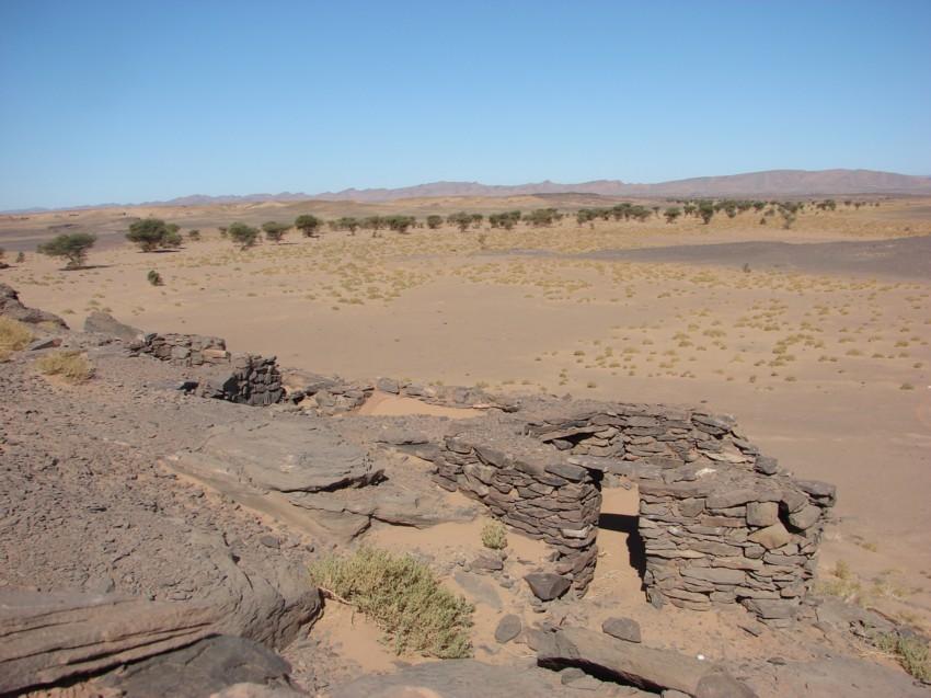 Le Grand Sud du Maroc - II 219725114