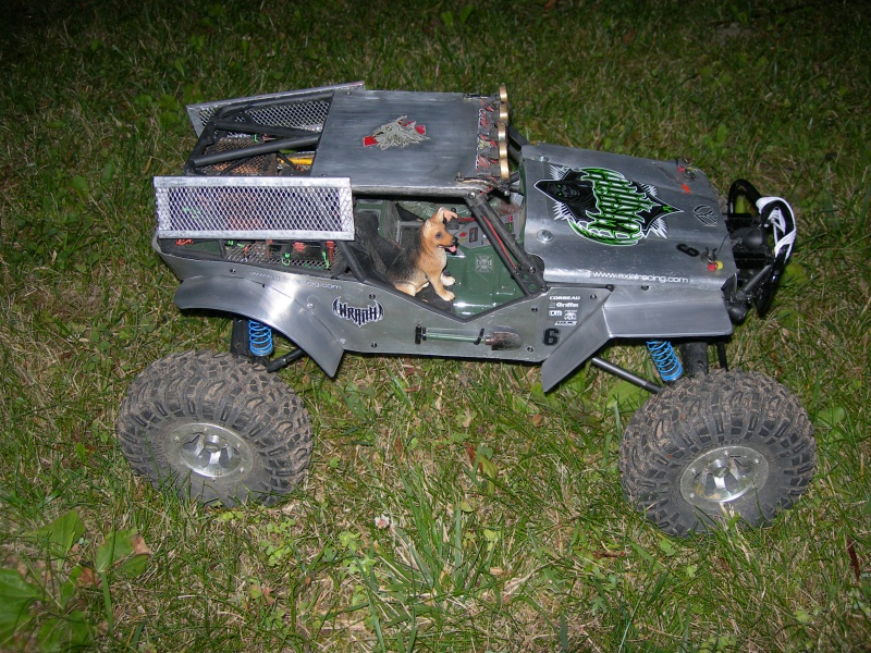Mon Wraith & ses évolutions 222469DSCN5315