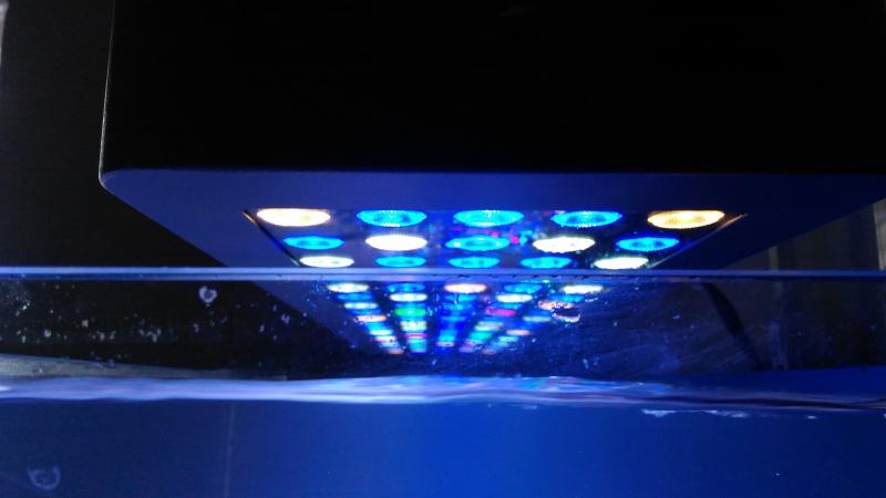 blau gran cubic 92 en jaubert 224920P201603271308141