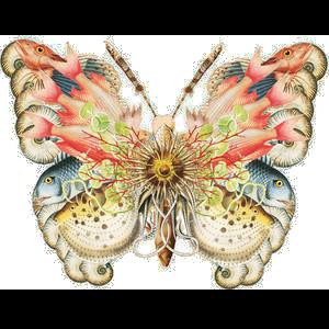 Tubes Papillon 226033Melgibson4ge1