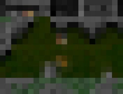 [Jeu] Pixels en folie - Page 5 227349po45