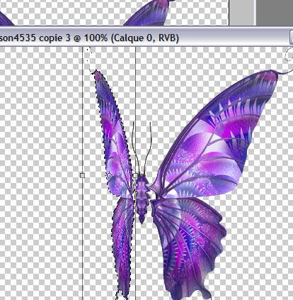 Tutoriel debutant faire bougé les ailes d'un papillon 227632Capture09