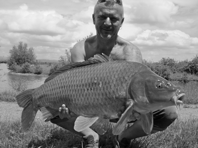 Vos plus jolis poissons (en dehors du poids) 2338741000937