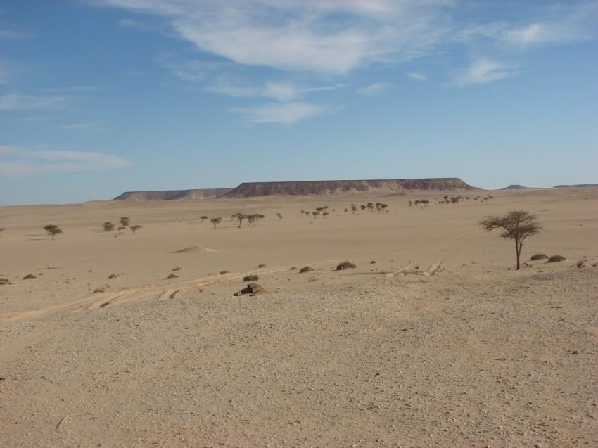 Le Grand Sud du Maroc - II 235687053